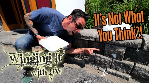 Winging It With DW: SE2EP6 [Hot Wings Review]The Rusty Nail [Clifton Park, NY ]